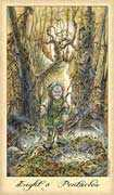 Eight of Coins Tarot card in Ghosts & Spirits deck