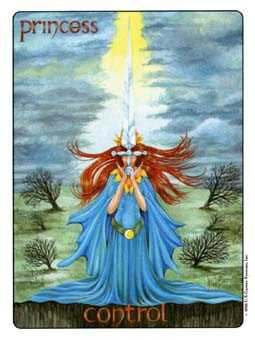 Slave of Swords Tarot Card - Gill Tarot Deck