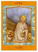 Five of Cups Tarot card in Goddess Tarot deck