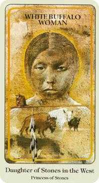 Page of Buffalo Tarot Card - Haindl Tarot Deck