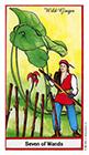 herbal - Seven of Wands
