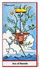 herbal - Ace of Swords