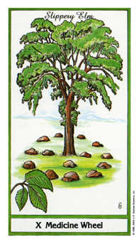 Wheel of Fortune Tarot Card - Herbal Tarot Deck
