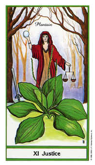 Justice Tarot Card - Herbal Tarot Deck