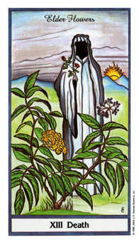 Death Tarot Card - Herbal Tarot Deck