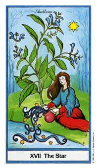 The Star Tarot Card - Herbal Tarot Deck