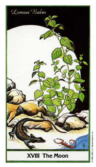 The Moon Tarot Card - Herbal Tarot Deck