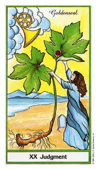 The Judgment Tarot Card - Herbal Tarot Deck