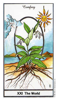 The World Tarot Card - Herbal Tarot Deck
