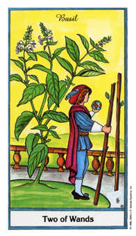 Two of Rods Tarot Card - Herbal Tarot Deck