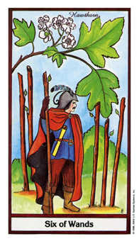 Six of Pipes Tarot Card - Herbal Tarot Deck