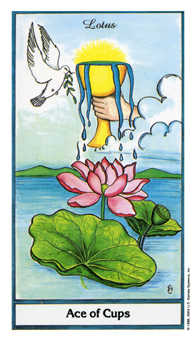 Ace of Cups Tarot Card - Herbal Tarot Deck