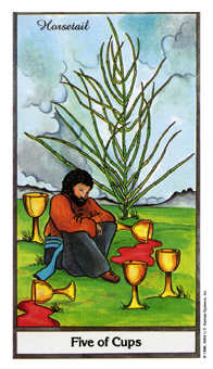 Five of Cups Tarot Card - Herbal Tarot Deck