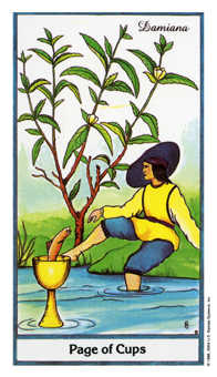 Valet of Cups Tarot Card - Herbal Tarot Deck
