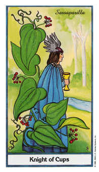 Knight of Cups Tarot Card - Herbal Tarot Deck