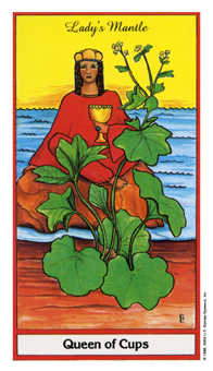 Queen of Bowls Tarot Card - Herbal Tarot Deck