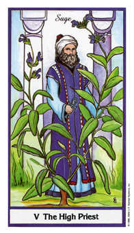 The High Priest Tarot Card - Herbal Tarot Deck
