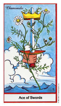 Ace of Swords Tarot Card - Herbal Tarot Deck