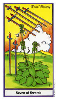 Seven of Swords Tarot Card - Herbal Tarot Deck
