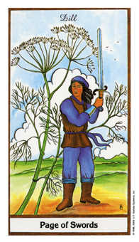 Page of Spades Tarot Card - Herbal Tarot Deck