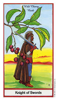 Spring Warrior Tarot Card - Herbal Tarot Deck