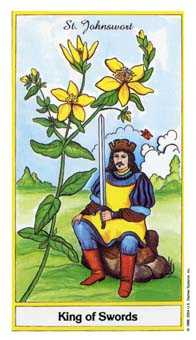 Roi of Swords Tarot Card - Herbal Tarot Deck
