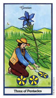 Three of Discs Tarot Card - Herbal Tarot Deck