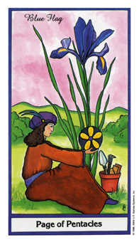 Valet of Coins Tarot Card - Herbal Tarot Deck