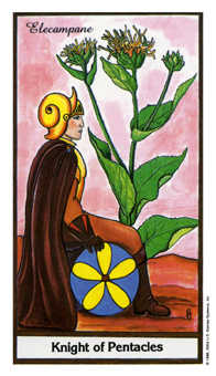 Cavalier of Coins Tarot Card - Herbal Tarot Deck