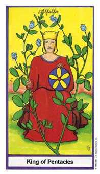 Roi of Coins Tarot Card - Herbal Tarot Deck