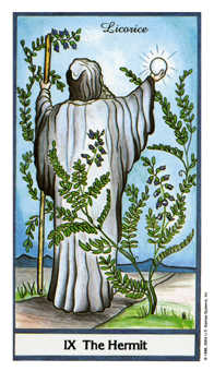 The Hermit Tarot Card - Herbal Tarot Deck