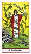 The Magician Tarot card in Herbal deck