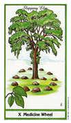 Wheel of Fortune Tarot card in Herbal Tarot deck