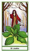 Justice Tarot card in Herbal deck