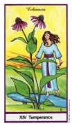 Temperance Tarot card in Herbal deck
