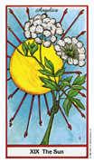 The Sun Tarot card in Herbal deck