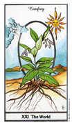 The World Tarot card in Herbal Tarot deck