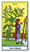 Two of Wands Tarot card in Herbal Tarot deck