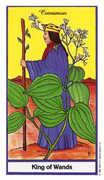King of Wands Tarot card in Herbal deck