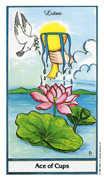Ace of Cups Tarot card in Herbal Tarot deck