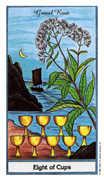 Eight of Cups Tarot card in Herbal deck