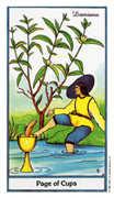 Page of Cups Tarot card in Herbal Tarot deck