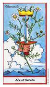 Ace of Swords Tarot card in Herbal deck