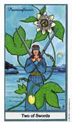 Two of Swords Tarot card in Herbal deck