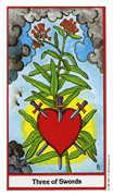 Three of Swords Tarot card in Herbal deck