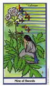 Nine of Swords Tarot card in Herbal deck