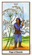 Page of Swords Tarot card in Herbal Tarot deck