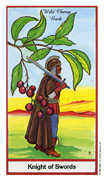 Knight of Swords Tarot card in Herbal deck
