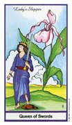 Queen of Swords Tarot card in Herbal Tarot deck