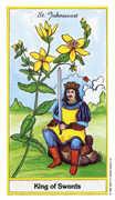 King of Swords Tarot card in Herbal deck